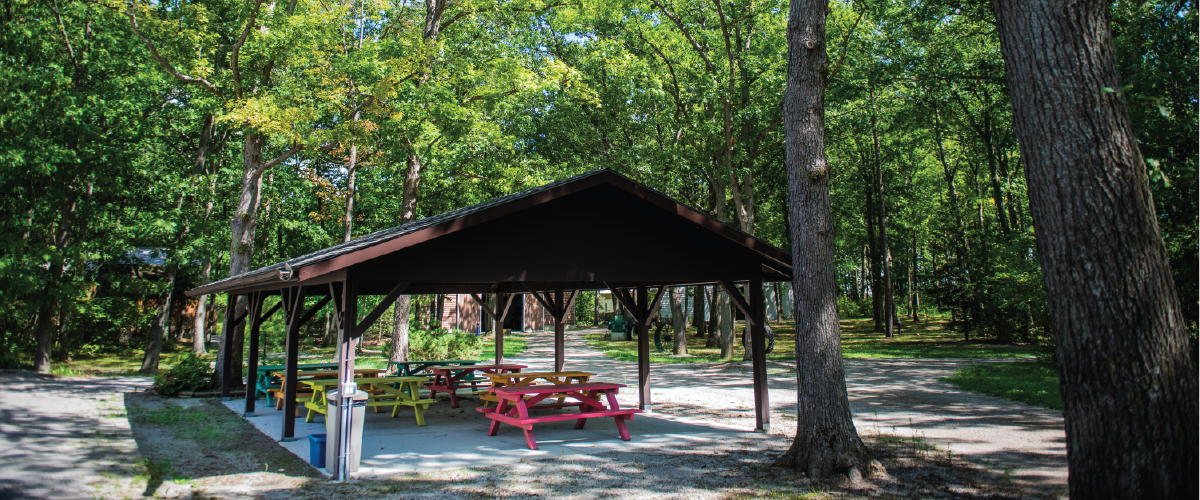 The forested Lambton Heritage Museum grounds, including a picnic pavilion nestled in the oak trees.