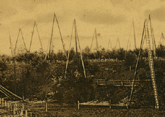 Antique photo of oil fields.
